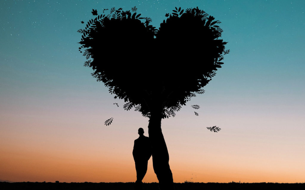 A boy is leaning against a heart-shaped tree